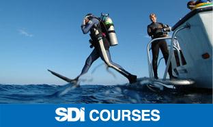 sdi-course